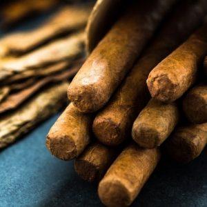 cohiba cigars brown cigars
