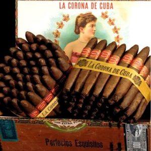 box with many corona cigars